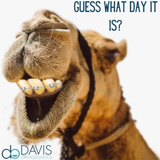 Guess what day it is? Not only it is Hump Day, but every day is Braces Day at Davis Orthodontics! We are accepting new patients- NO REFERRAL NEEDED! Give us a call at 803-739-1600 for an appointment. #DObraces #SmileOn #newpatientswelcome #Braces #humpday